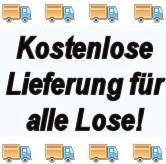 Losen Online